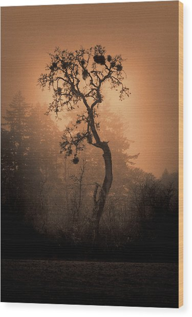 One Stands Alone Wood Print