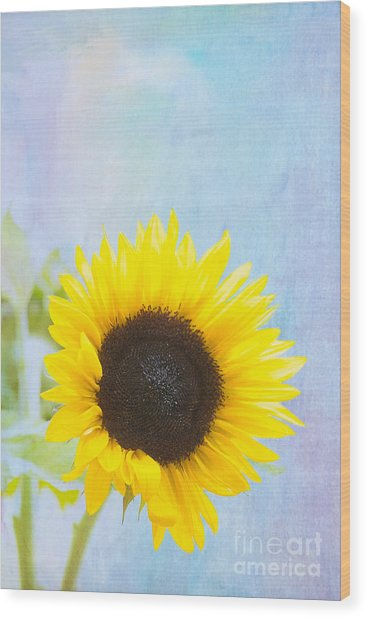 One Sunflower Wood Print by Kay Pickens