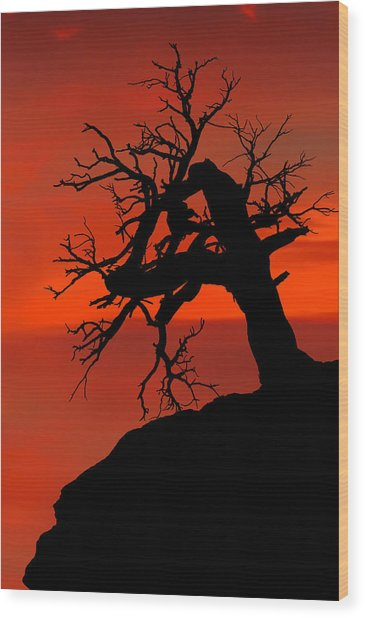 One Tree Hill Silhouette Wood Print