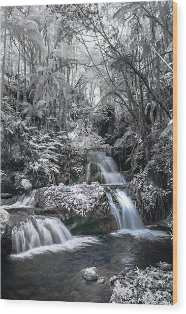Onomea Falls In Infrared 2 Wood Print