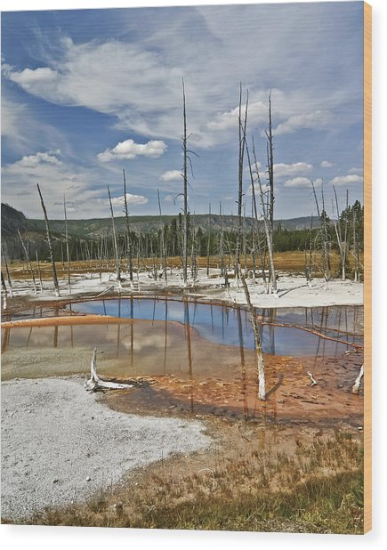 Opalescent Pool Wood Print
