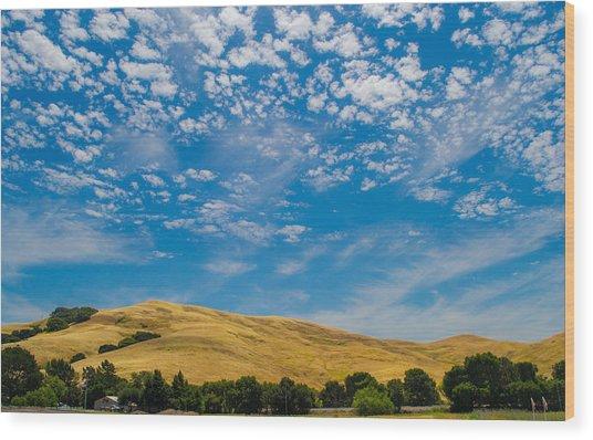 Open Sky Wood Print by Rima Biswas