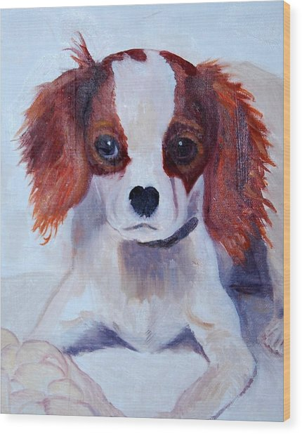Opie As A Puppy Wood Print