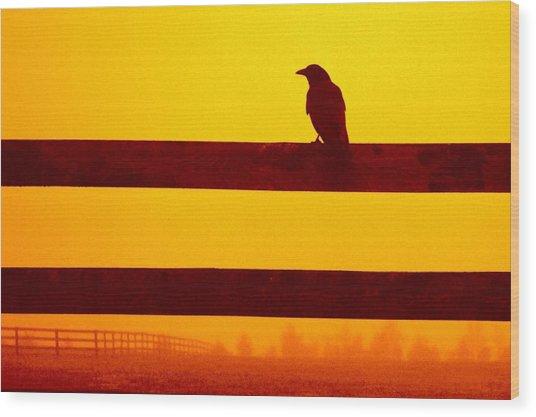 Opportunist In Orange Wood Print