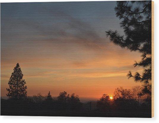 Orange-1 Wood Print