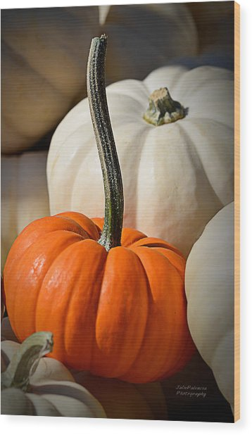 Orange And White Pumpkins Wood Print