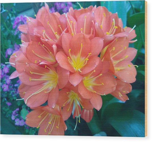 Orange Bouquet Wood Print