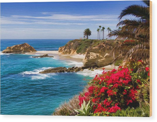 Orange County Coastline Wood Print