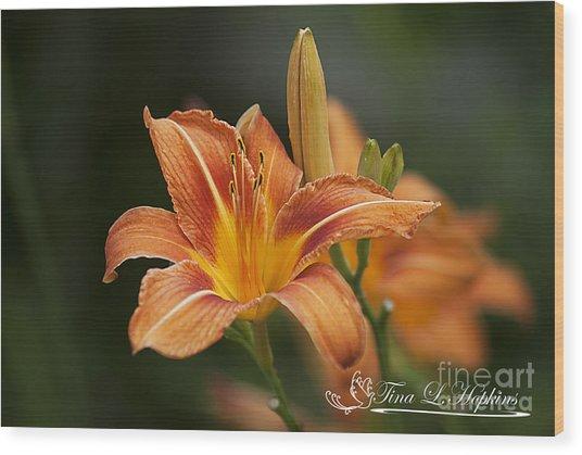 Orange Day Lily 20120624_214a Wood Print
