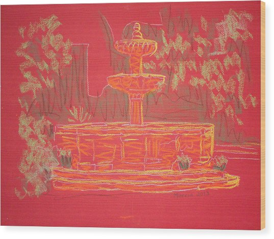 Orange Fountain Wood Print by Marcia Meade