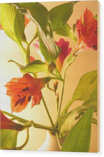 Orange Fresias Wood Print