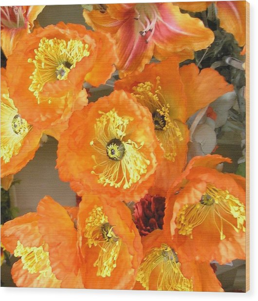 Orange Joy Wood Print