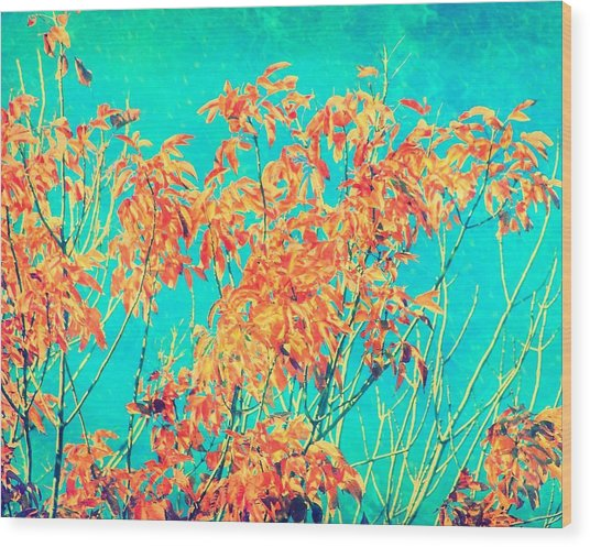Orange Leaves And Turquoise Sky  Wood Print