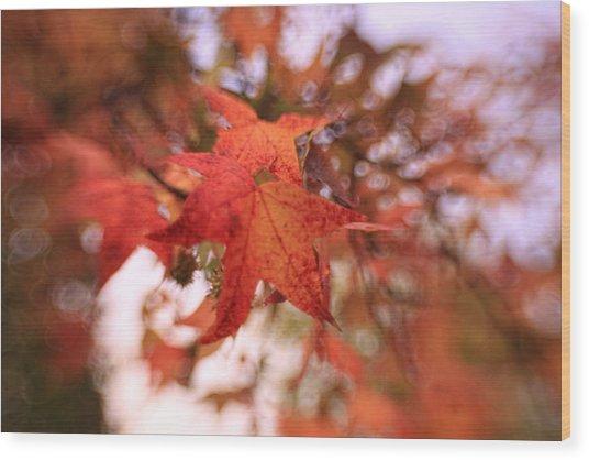 Orange Leaves Wood Print
