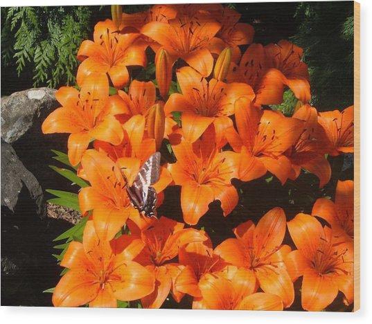 Orange Lilies Wood Print