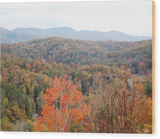 Orange Mountain Range Wood Print by Regina McLeroy