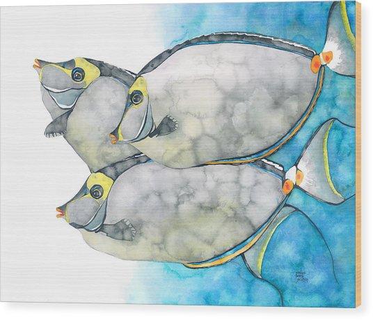 Orangespine Unicornfish Wood Print