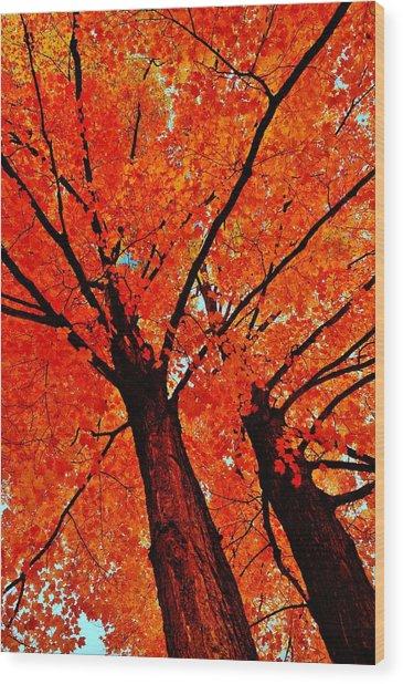 Orange...the New Green Wood Print