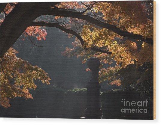 Orangish Wood Print