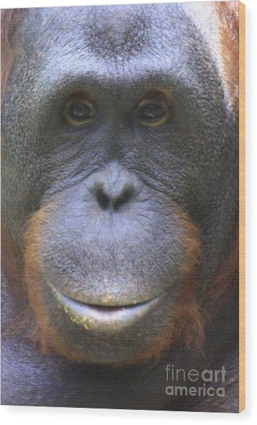 Orangutan Wood Print
