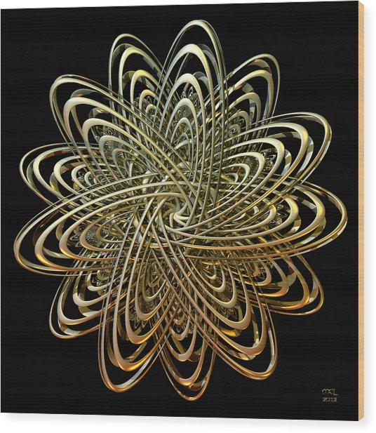 Orbital Elements Wood Print