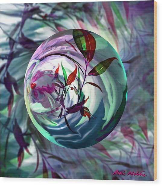 Orbiting Cranberry Dreams Wood Print