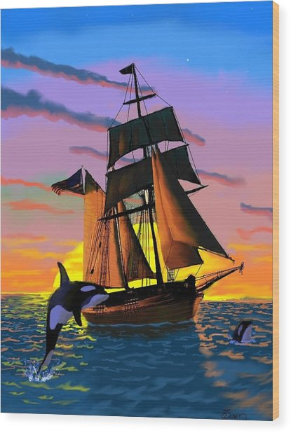 Orcas At Sunset Wood Print by Brad Simpson