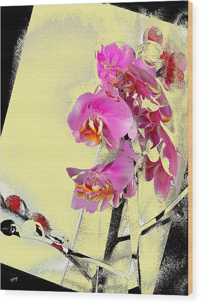 Orchid And Cream Wood Print by Martin Jay