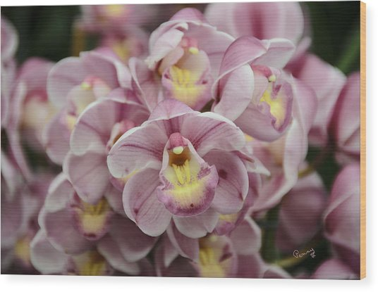 Orchid Bouquet Wood Print