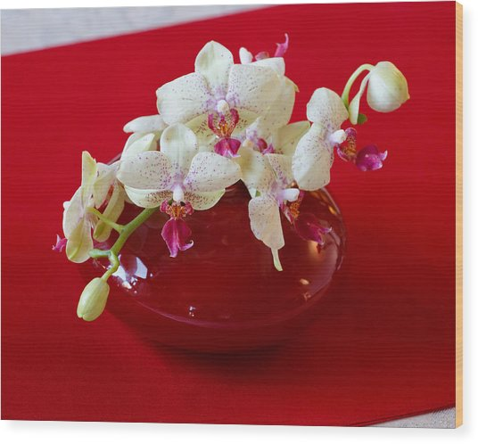 Orchid Center Piece Wood Print by Paul Indigo