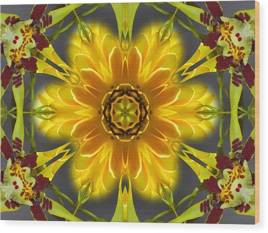 Orchid Flower Star Mandala Wood Print