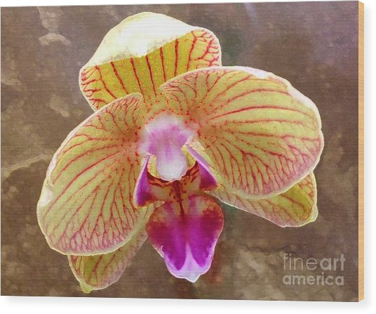 Orchid On Marble Wood Print