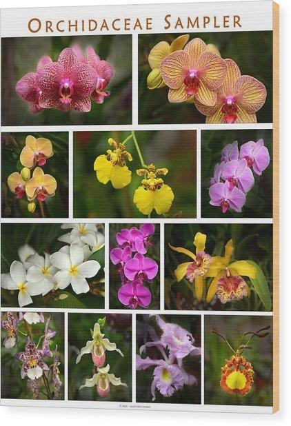 Orchid Sampler Wood Print