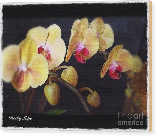 Orchids Arise Wood Print