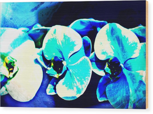 Wood Print featuring the mixed media Orchids Of Ranetta by Michelle Dallocchio
