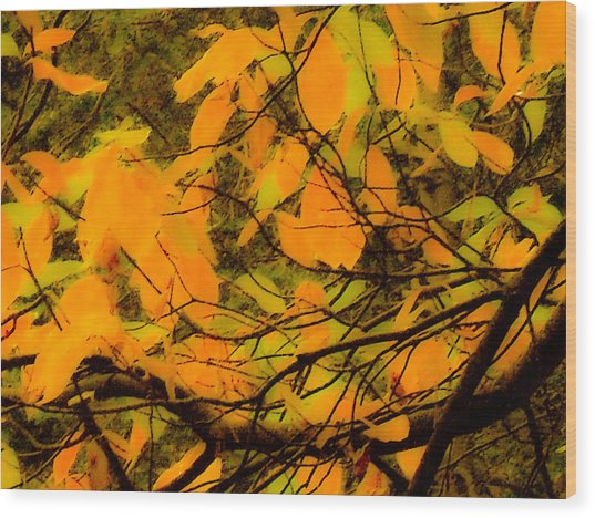 Ore Leaves Wood Print