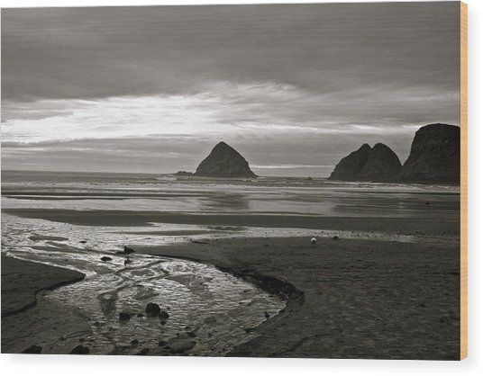 Oregon Seashore Wood Print