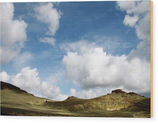 Oregon Trail Country Wood Print