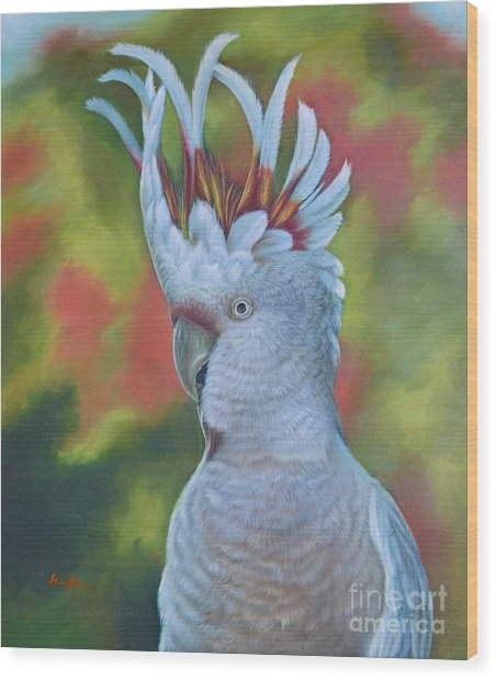 Original Animal Oil Painting Art -parrot #16-2-5-17 Wood Print
