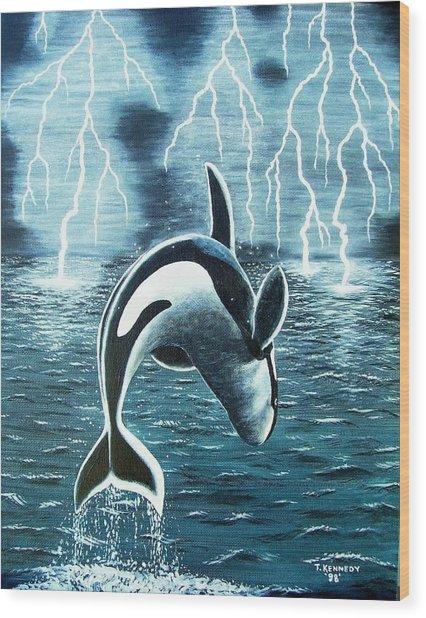 Orka     Killer Whale Wood Print