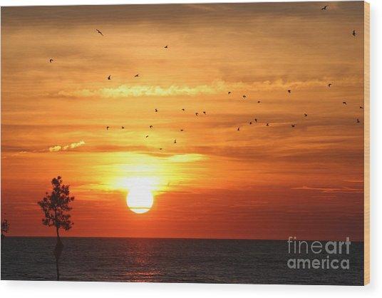 Orleans Sunset Wood Print
