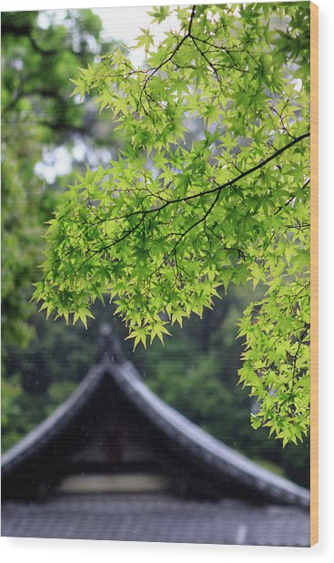 Ornately Designed Roof And Japanese Wood Print by Paul Dymond