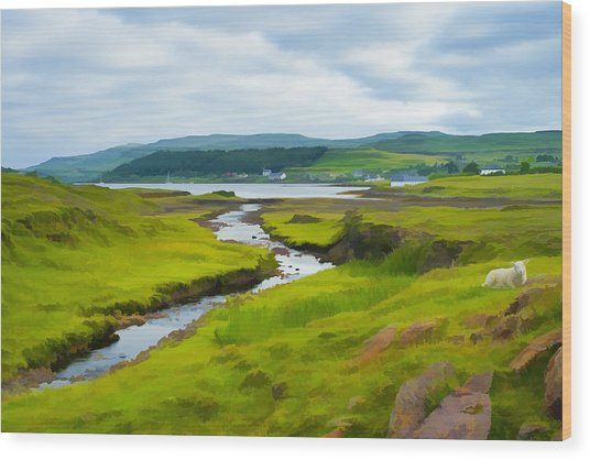 Osdale River Leading Into Loch Dunvegan In Scotland Wood Print