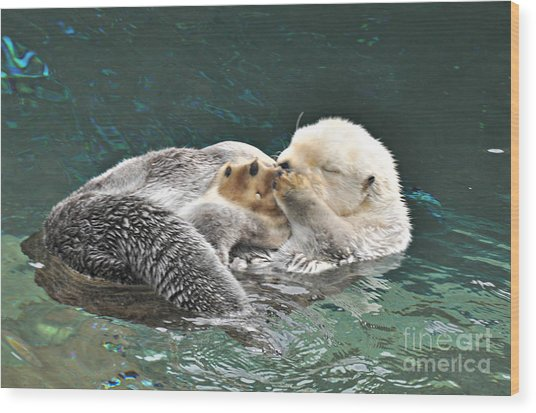 Otter Dreams Wood Print