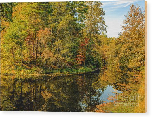 Otter Lake In The Fall Wood Print by Mark East