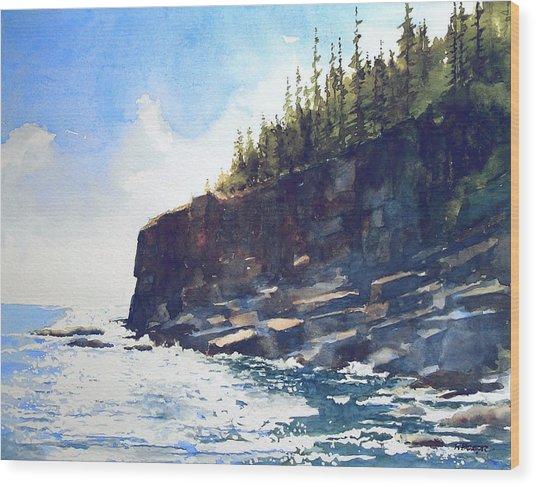 Otter Point Wood Print
