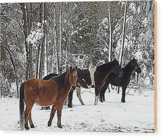 Our Horses Wood Print