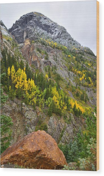 Ouray Canyon Fall Color Wood Print