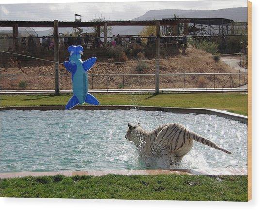 Out Of Africa Tiger Splash 3 Wood Print