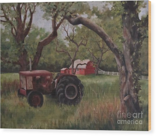 Out Of Commission Wood Print by Karen Olson